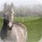 Good Horsemanship