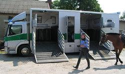 Horse Transportation Specialist