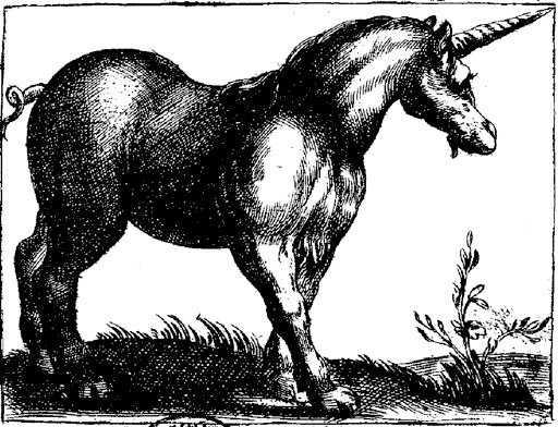 India Unicorn