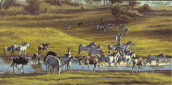 Ndutu River Crossing